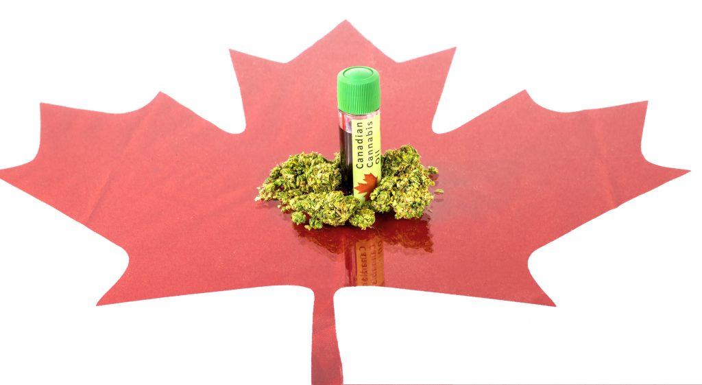 prescription for marijuana canada